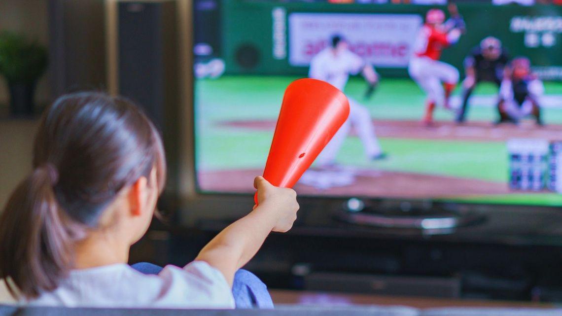 プロ野球の試合中継をネットで見る方法